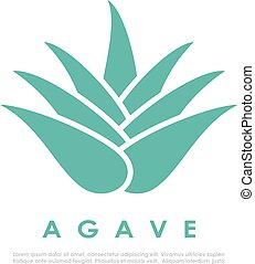 Agave cactus icon - Agave cactus vector icon
