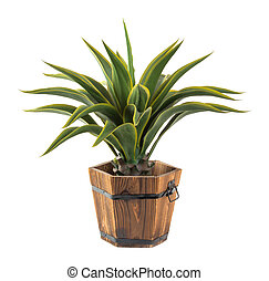 Agave in wood bucket -Artificial plant - Close up Agave in...