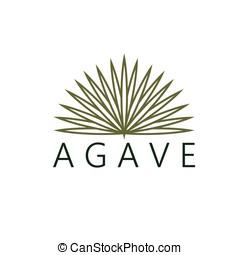 agave, vetorial, desenho, modelo