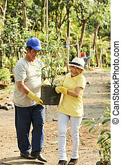 Aged Asian people carrying plant