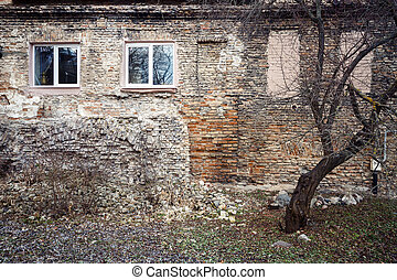 Aged brick wall with windows and a tree