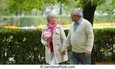 Aged Flirt - Fresh-looking seniors walking in park and...