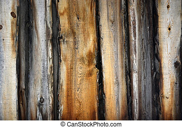 Aged wood. Picture can be used as a background