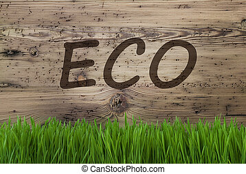 Aged Wooden Background, Gras, Text Eco