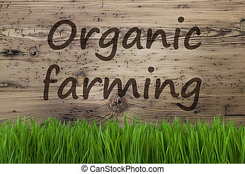 Aged Wooden Background, Gras, Text Organic Farming