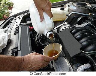 aggiungere, olio, a, uno, automobile