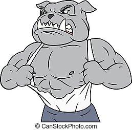 Aggressive bulldog tearing his shirt - Illustration of the ...