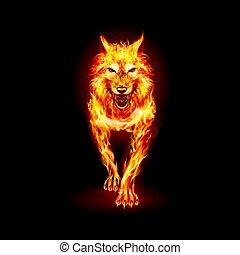 Fire Woolf