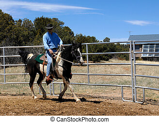 Male trainer takes his horse through his paces as he circles metal pen. Man is wearing jeans and a denim shirt topped by a black leather cowboy hat.