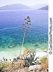 Agia Efimia beach, Kefalonia - View of Agia Efimia beach on ...