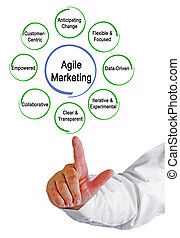 Agile Marketing Properties