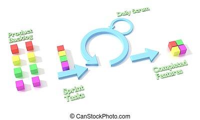 Agile scrum software development methodology diagram on white