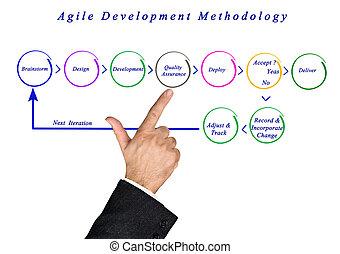 agile, sviluppo, metodologia