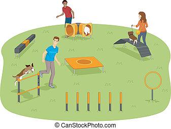 agilità, cane, prova