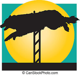 Agility Dog - Silhouette of a Border Collie jumping a hurdle...