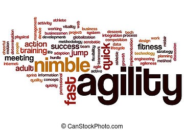 Agility word cloud