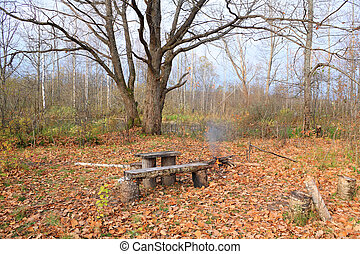 aging bench in autumn park