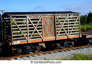 Aging Cattle Car