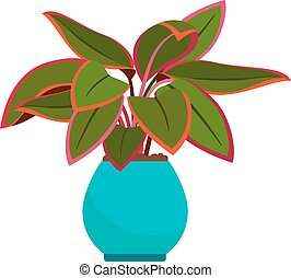 Aglaonema house plant in blue flower pot, vector icon on ...