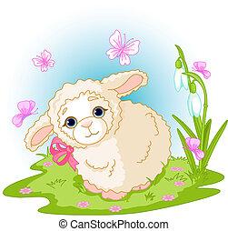 agnello, pasqua