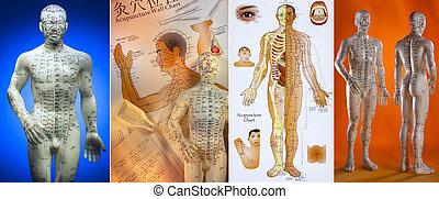 agopuntura, medicina, -, cinese