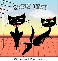 agréable, couple, chats, noir, toit