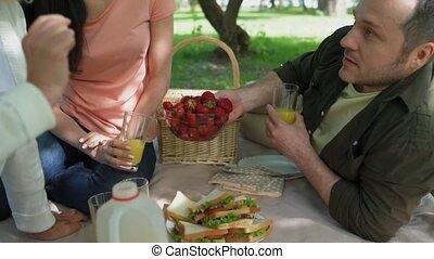 agréable, famille, avoir pique-nique, dans parc