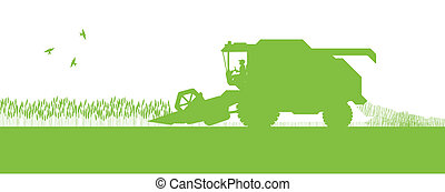 agrícola, combine ceifeira, sazonal, agricultura, paisagem,...