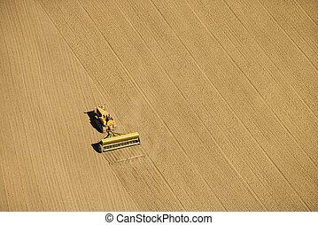 agrícola, cultivando.