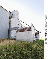agrícola, edifício.