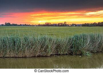 agrícola, paisagem, rio