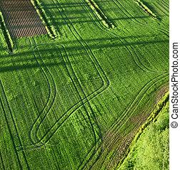 agrícola, terra