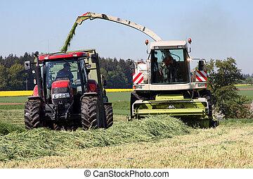 agrícola, trabalho, com, um, chopper