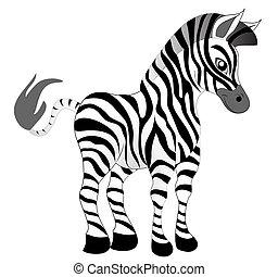 agradável, zebra