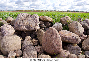 agrarian landscape with stones