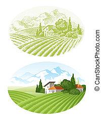 agrarisch, felder, mounains, hand, vektor, dorf, gezeichnet, landschaftsbild
