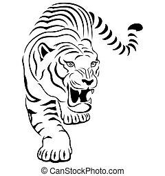 agresivo, caza, tigre