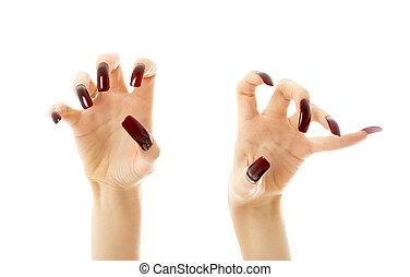 agressivo, pregos, longo, mãos