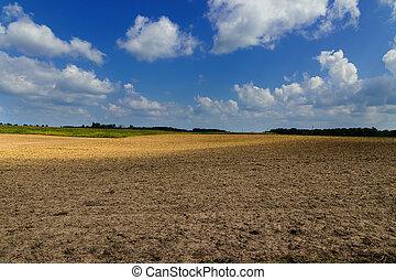 agricolo, sporcizia, campo