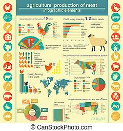 agricoltura, infographics