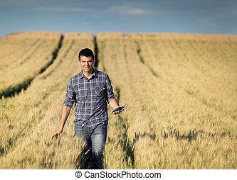 agricultor, com, tabuleta, em, trigal
