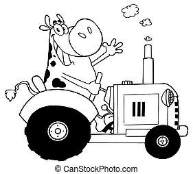 agricultor, feliz, vaca, esboçado
