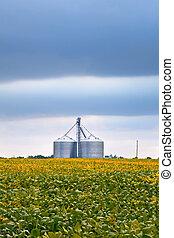 agricultura, indústria, com, soja, campos, e, silo, ligado,...