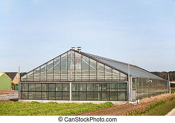 agricultura, invernadero