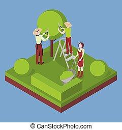 agricultura, jardinagem, e, agriculture., corte, a, árvore, com, pruner.