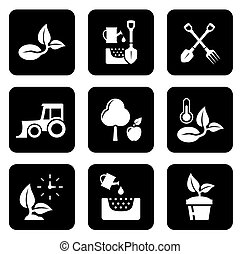 agricultura, jogo, pretas, ícone