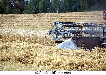 agricultura, maquinaria, closeup