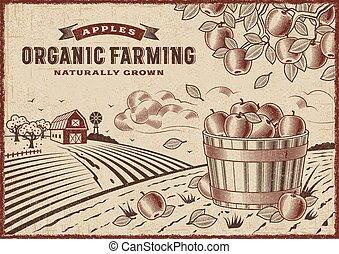 agricultura, orgânica, maçã, paisagem