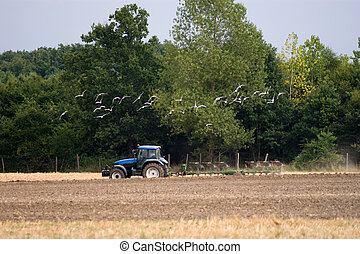 agricultura, trator