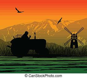 agricultura, trator, paisagem, cultivado